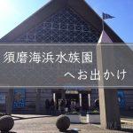 家族で須磨水族園(スマスイ)へ♪オススメ駐車場やイルカショーを楽しむコツとは?